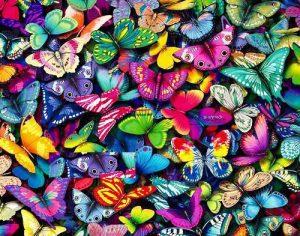 arcobaleno di farfalle